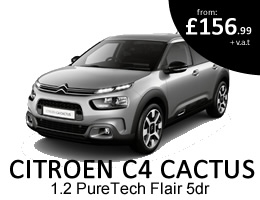 C4 Cactus - Special Offer